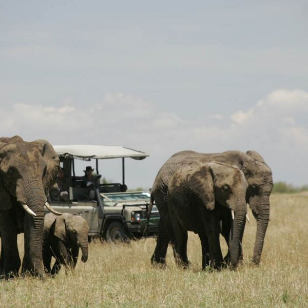 Recommended Safari and Beach Holiday in Kenya